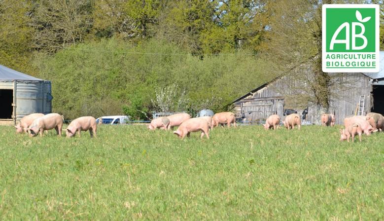 Ferme de la Nortière - viande bio